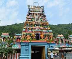 Tour Package In Rameswaram
